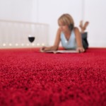 san-antonio-floor-floor-depot-carpet-myths